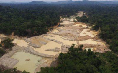 Em carta à OCDE, 61 entidades criticam políticas do governo Bolsonaro