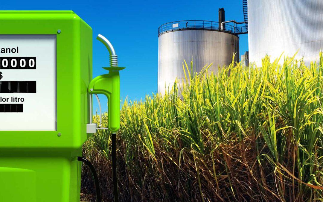 Produzir etanol de cana pode emitir menos do que se pensava