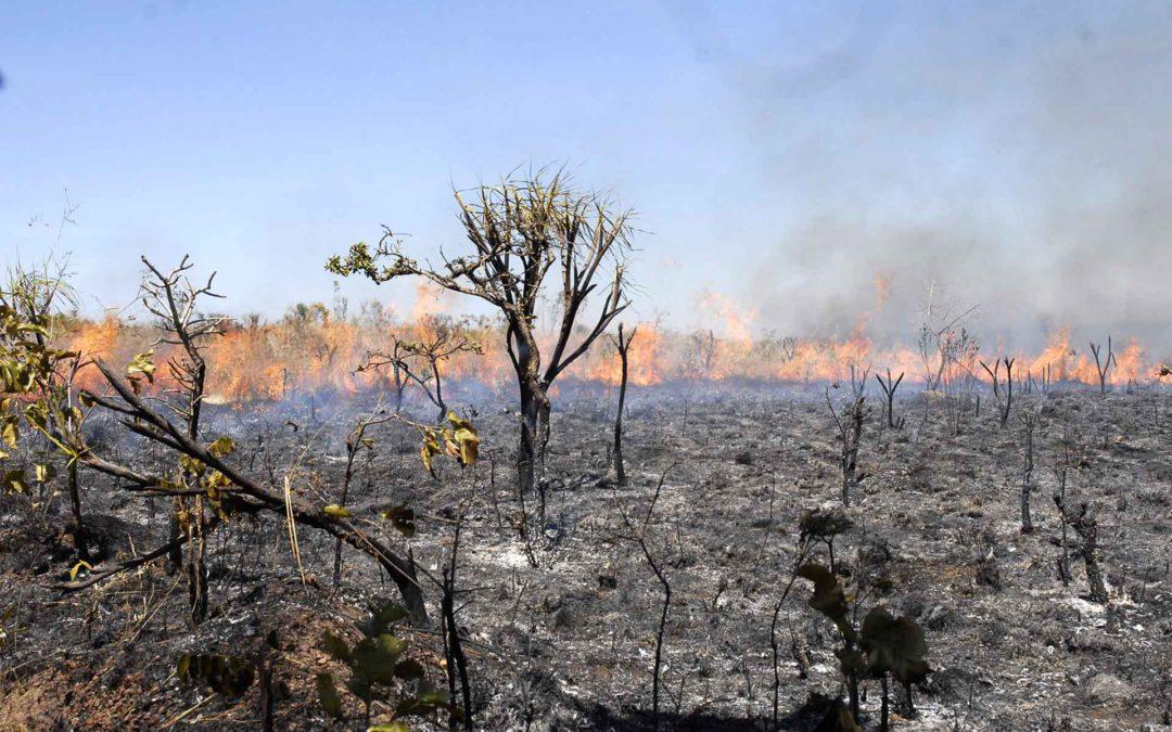 COP26: As críticas do Brasil a relatório da ONU crucial para conferência sobre mudanças climáticas